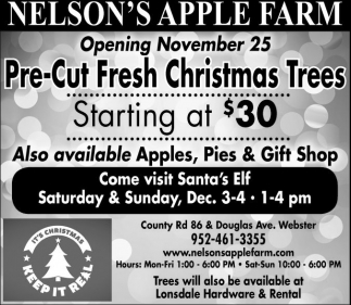 Pre-Cut Fresh Christmas Trees