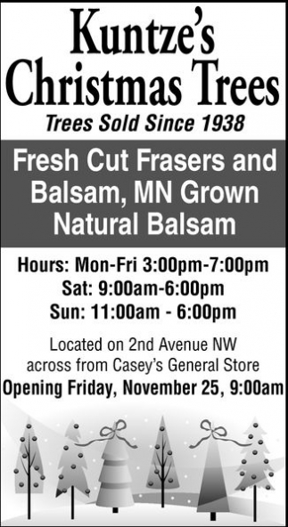 Fresh Cut Frasers and Balsam, MN Grown Natural Balsam