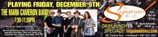 The Mark Cameron Band