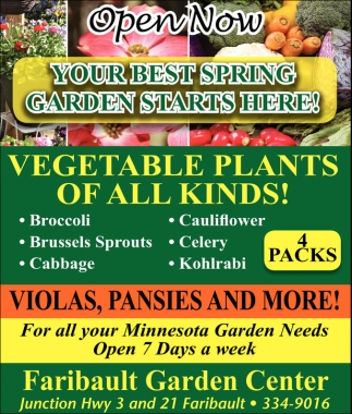 Vegetable Plants of All Kinds!