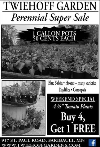 Perennial Super Sale
