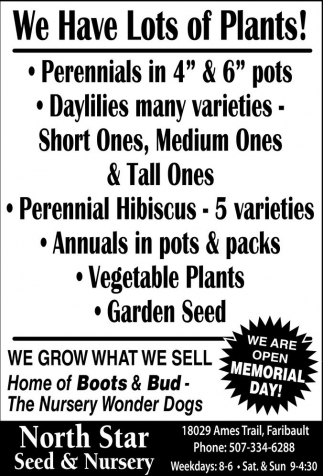 We Are Open Memorial Day!