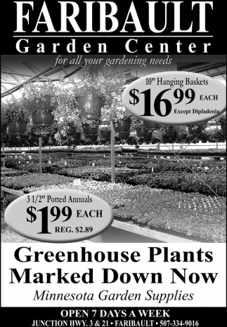 Greenhouse Plants Marked Down Now