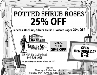 Potted Shrub Roses 25% off