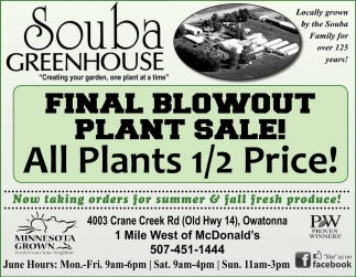 Final Blowout Plant Sale! All Plant 1/2 Price!