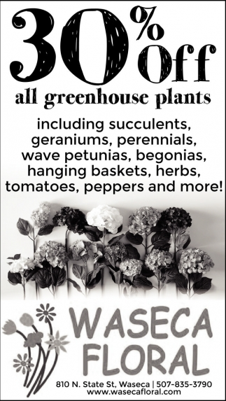 30% off all greenhouse plants, Waseca Floral, Waseca, MN