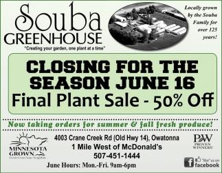Final Plant Sale - 50% off