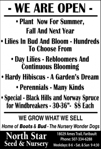 Perennials, Daylilies, Bloomers, Evergreens, Vegetables, Plants