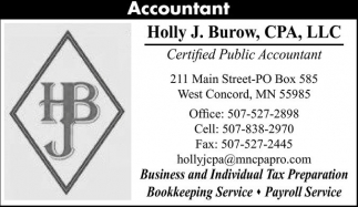 Certified Public Accountant, Holly J. Burow, CPA, LLC