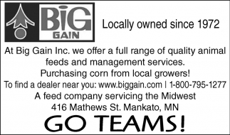 Go Teams!, Big Gain, Mankato, MN