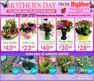 MOTHER'S DAY FLOWERS AND PLANTS FOR MOM