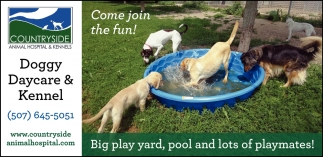 Come join the fun!
