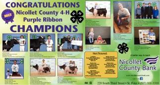 Congratulations Nicollet County 4-H Purple Ribbon Champions