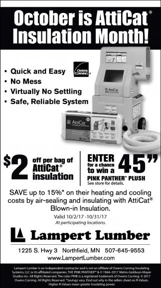October is AttiCat Insulation Month!