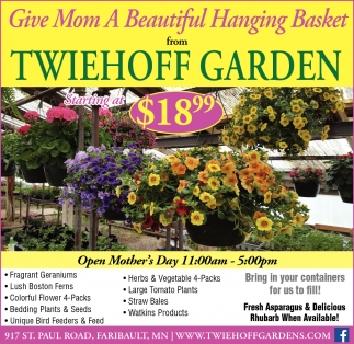 Give Mom A Beautiful Hanging Basket