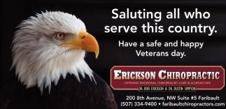 Hapy Veterans Day