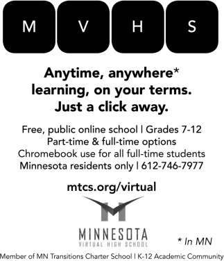 Mn online school options