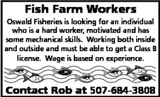 Fish Farm Workers
