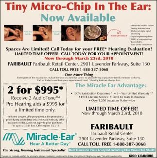 Tiny Micro-Chip