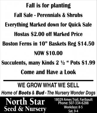 Fall Sale - Perennials & Shrub