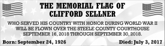 Memorial Flag of Clifford Sellner, Steele County Courthouse, Owatonna, MN