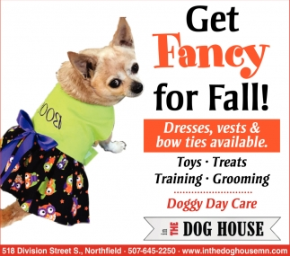 Get Fancy for Fall!