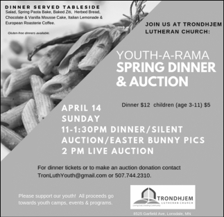 Youth - A -Rama Spring Dinner & Auction