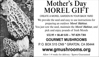 Mother's Day - Morel Gift