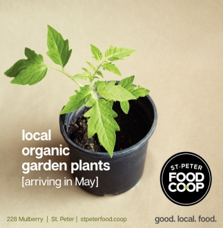 Local organic garden plants - arriving in May