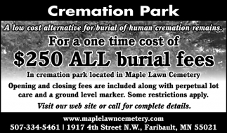 $250 All burial fees