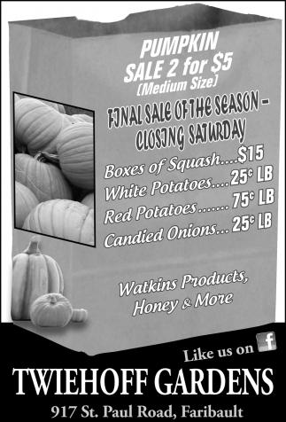 Pumpkin Sale 2 for $5