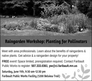Raingarden Workshop: Planting for Pollinators