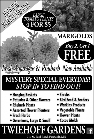 HANGING BASKETS SPECIALS
