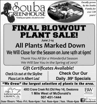 FINAL BLOWOUT PLANT SALE!
