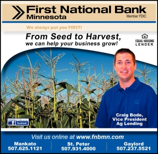 From Seed to Harvest, we can help your business grow!