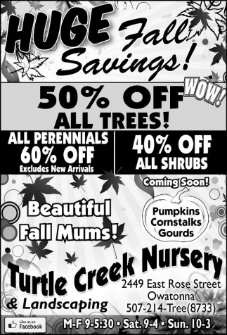 50% OFF ALL TREES!