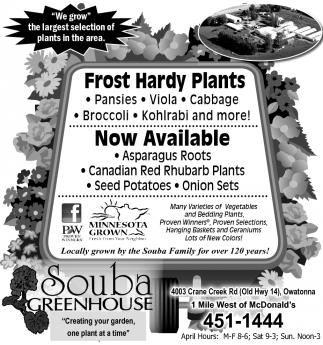 Frost Hardy Plants