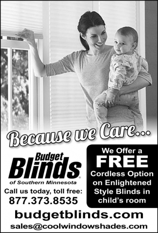 Free Cordless Option on Enlightened Style Blinds, Budget Blinds, MN
