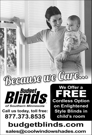 Free Cordless Option on Enlightened Style Blinds in child's room, Budget Blinds, MN