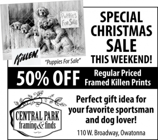 Special Christmas Sale